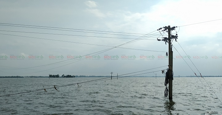 Bhangura+Electric+Distribution+Line