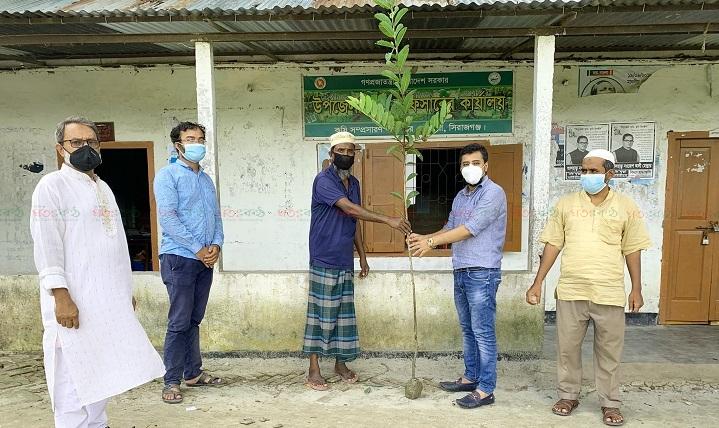 Chouhali+Mujibyear+Tree+Distribution