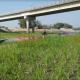 উল্লাপাড়া+উপজেলা+কৃষি+কর্মকর্তা+shatakantha
