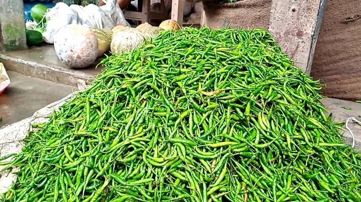 ভূট্টা মরিচের জেলা গাইবান্ধাতেই মরিচের দাম বৃদ্ধি